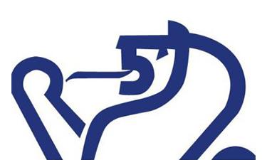 Lions Equipment Logo