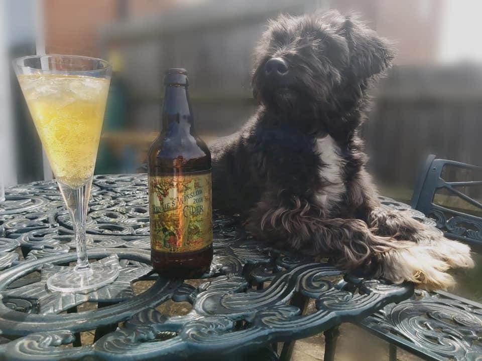 Rennies Winslow Cider