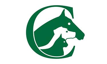 Country Equestrian Logo